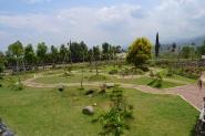 Taman kelinci dimana si kecil dapat bermain bersama kelinci
